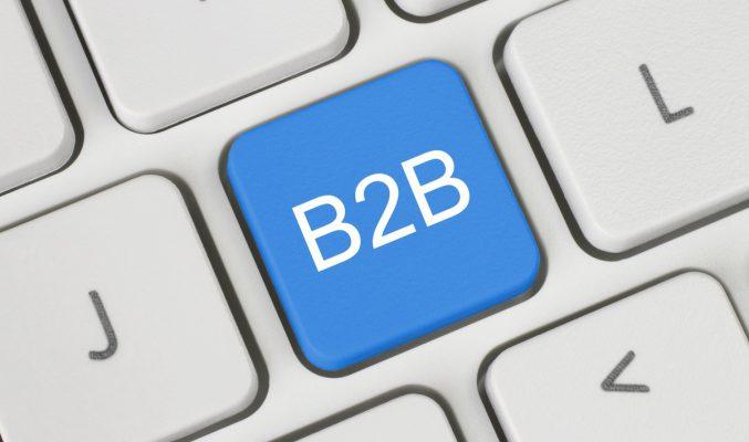 b2b-painike